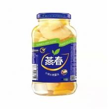 燕春水果什锦罐头700g