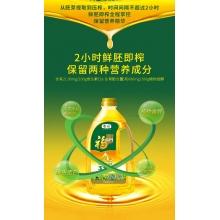 福临门1.8l黄金产地玉米油